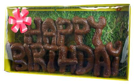 happy-birthday-dog-poop-cake