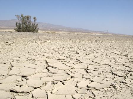 Karakum_Desert