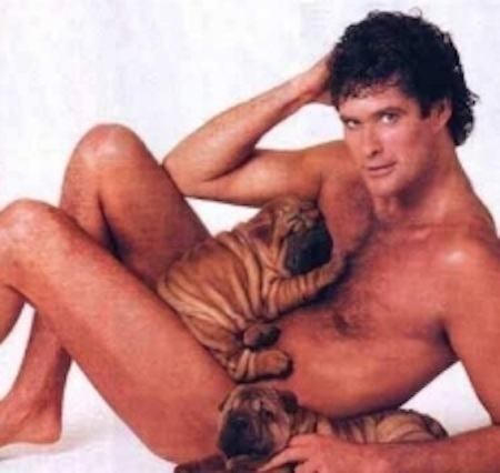 The-Hoff-Takes-a-Nap-During-Live-Interview-2