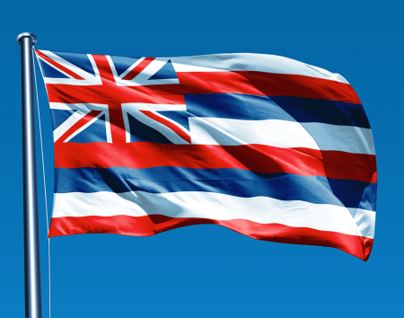 HawaiiFlagPicture4