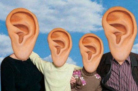 pasadena-ear-family